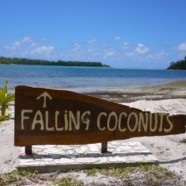 Unpleasant Constants, Falling Coconuts, And Keeping Things In Perspective