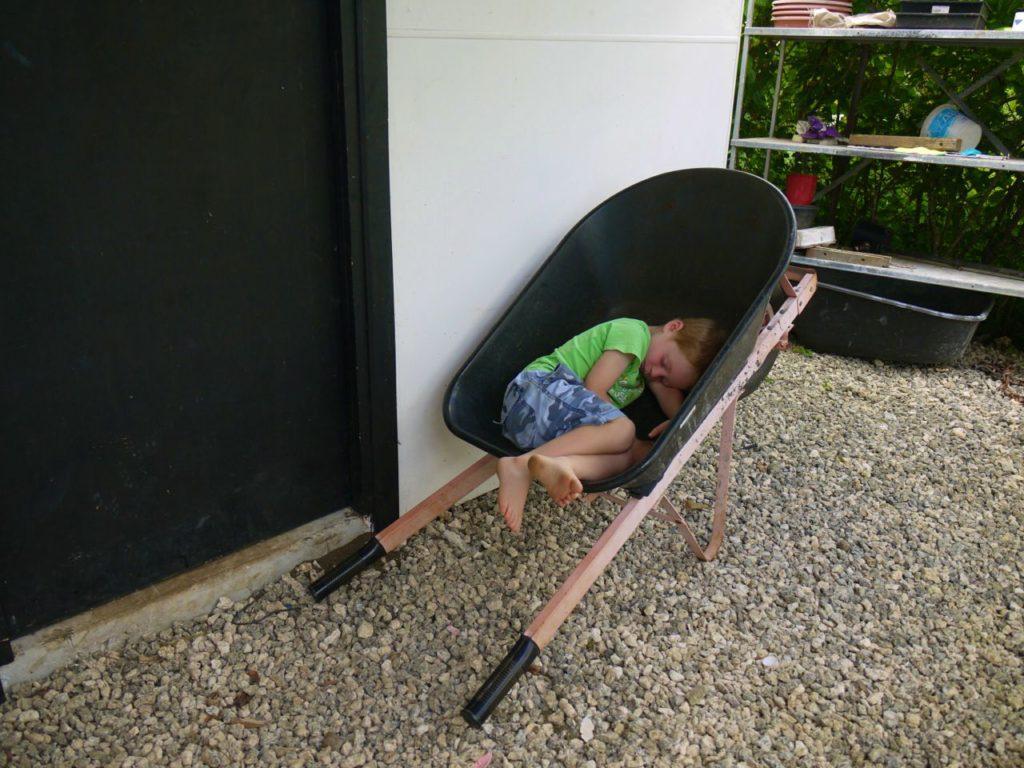 dom-asleep-wheelbarrow